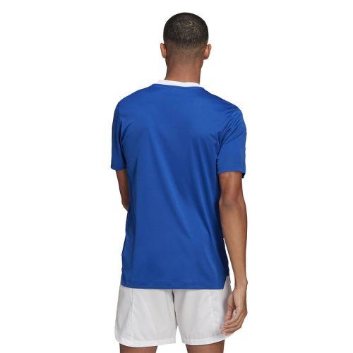 Koszulka adidas TIRO 21 TR JSY GM7589