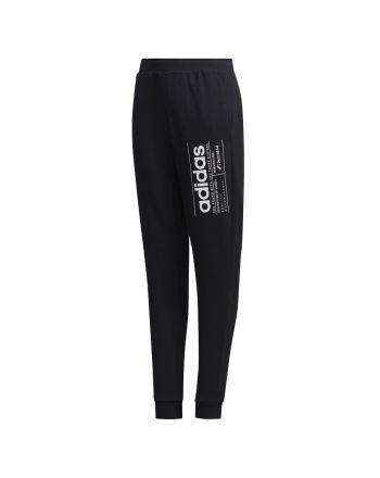 Spodnie adidas Youth Boys Brillian Basic FM0786