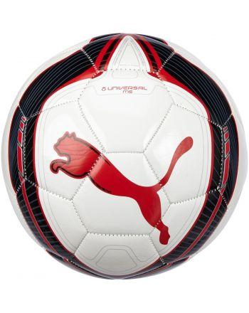 Piłka nożna PUMA All Ages 082033-08